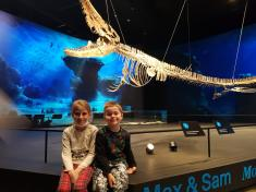 Dinosauria Museum Prague